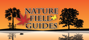 NATURE field guides
